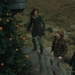 Harry-Potter-and-the-Deathly-Hallows-Part-1-ScreenShot-59