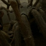Harry-Potter-and-the-Half-Blood-Prince-ScreenShot-081