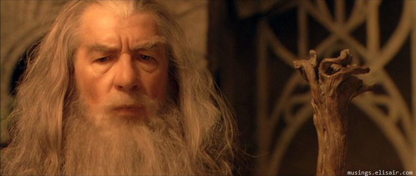 The Lord of the Rings : The Fellowship of the Ring - Musings From Us