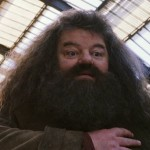Harry-Potter-And-The-Sorcerers-Stone-ScreenShot-19