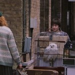 Harry-Potter-And-The-Sorcerers-Stone-ScreenShot-22