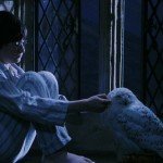 Harry-Potter-And-The-Sorcerers-Stone-ScreenShot-32