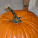 Halloween-Pumpkin-Carving-for-2011-06