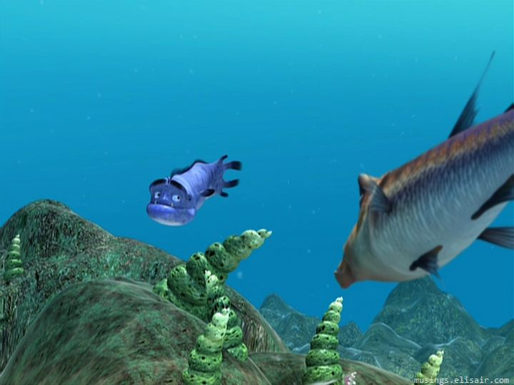 Cash And Go >> The Reef : Shark Bait!   Musings From Us