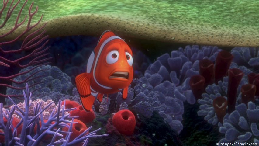 Finding Nemo : There are 3.7 trillion fish in the ocean, they're looking for one. | Musings From Us