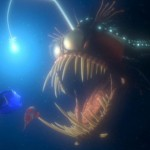 Finding-Nemo-2003--ScreenShot-31
