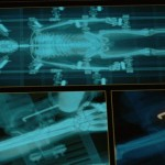 X-Men-Origins-Wolverine-ScreenShot-36