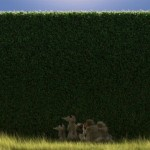Over-The-Hedge-2006-ScreenShot-022